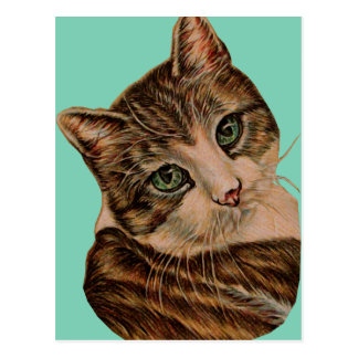 Cute Cat with Green Eyes and Tilted Head Post Cards