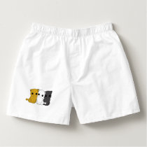 Cute cats boxers