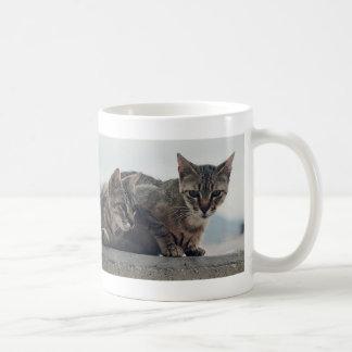 Cute Cats Duo Mugs