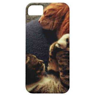 Cute Cats Holding Hands iPhone SE/5/5s Case
