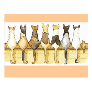 Cute cats lineup postcard
