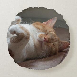 Cute Cats sleeping Round Throw Pillow