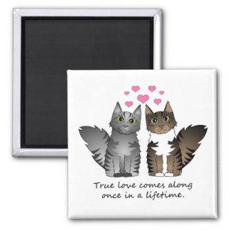 Cute Cats - True Love 2 Inch Square Magnet