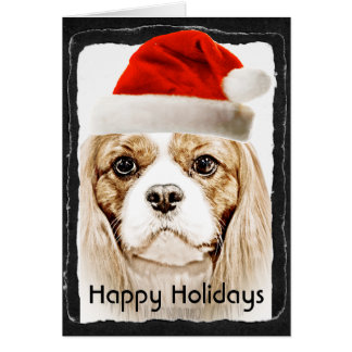 Cute Cavalier King Charles Spaniel Greeting Cards