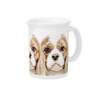 Cute Cavalier King Charles Spaniel Pitchers