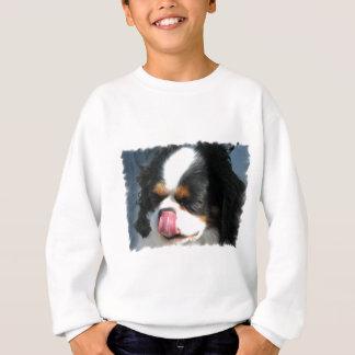 Cute Cavalier Spanial Dog  Youth Sweatshirt