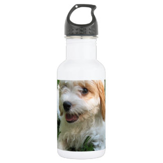 CUTE CAVAPOO PUPPY STAINLESS STEEL WATER BOTTLE