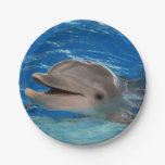 Cute Chattering Dolphin 7 Inch Paper Plate