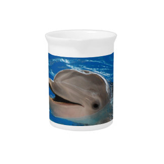 Cute Chattering Dolphin Beverage Pitcher
