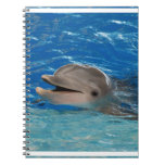 Cute Chattering Dolphin Note Books
