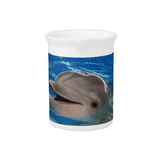 Cute Chattering Dolphin Pitcher