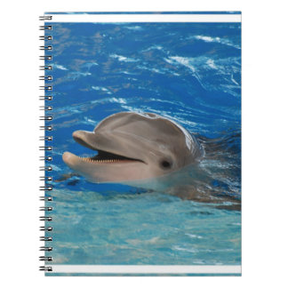 Cute Chattering Dolphin Spiral Notebook