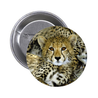 Cute Cheetah Button
