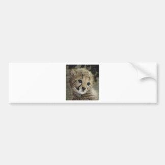 Cute cheetah cub bumper sticker