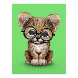 Cute Cheetah Cub Wearing Glasses on Green Postcard