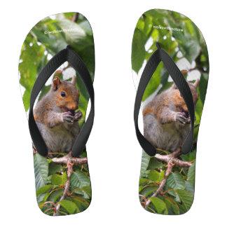 Cute Cherry Picking Eastern Grey Squirrel Flip Flops