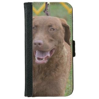 Cute Chesapeake Bay Retriever iPhone 6/6s Wallet Case
