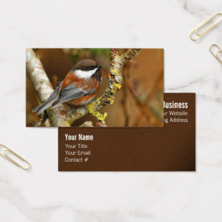 Cute Chestnut-Backed Chickadee on the Pear Tree Business Card