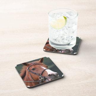 Cute Chestnut Horse Cork Coasters