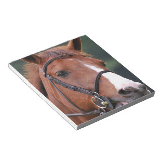 Cute Chestnut Horse Notepad