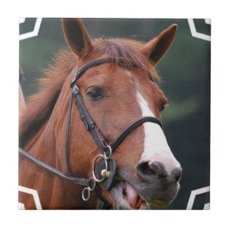 Cute Chestnut Horse Tile
