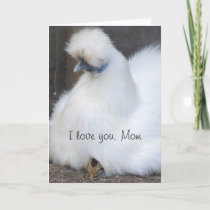 Cute chick/ chicken Mothers day card
