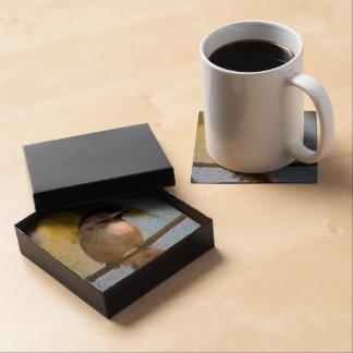 Cute Chickadee on A Branch Photograph Drink Coaster