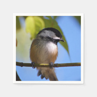 Cute Chickadee on A Branch Photograph Disposable Napkins
