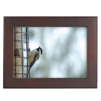 Cute Chickadee Perched on a Bird Feeder Memory Box