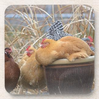 Cute Chicken Coasters