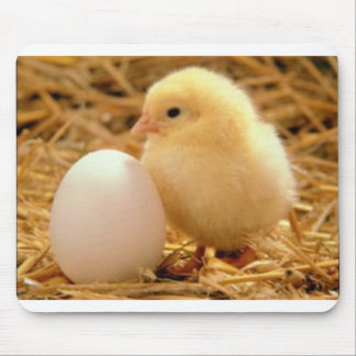 Cute chicken mouse pad