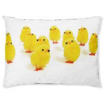 cute chicks dog bed