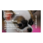 Cute Chihuahua   Business Cards