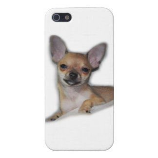 Cute Chihuahua Case Glossy Finish iPhone 5