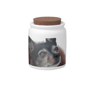 Cute Chihuahua Photos Candy Jar