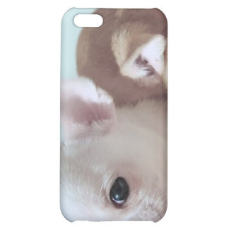 Cute chihuahua puppies iPhone 4 speck case iPhone 5C Cover