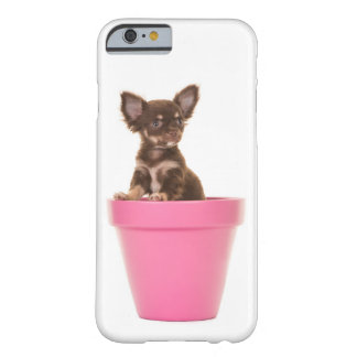 Cute chihuahua puppy barely there iPhone 6 case