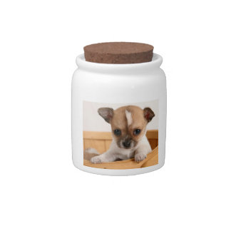 Cute Chihuahua Puppy Candy Jar