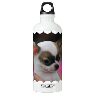 Cute Chihuahua SIGG Traveler 0.6L Water Bottle