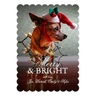 Cute Chihuahua With A Santa Hat Card