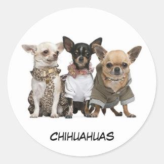 Cute Chihuahuas Classic Round Sticker