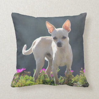 Cute Chihuahuha in flower bed Throw Pillows
