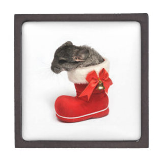Cute Chinchilla in Christmas Stocking Premium Gift Boxes