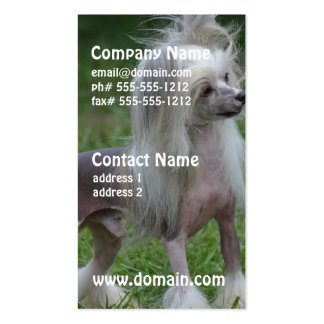 Cute Chinese Crested Dog Double-Sided Standard Business Cards (Pack Of 100)
