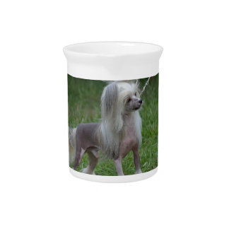 Cute Chinese Crested Dog Drink Pitchers