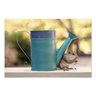 Cute Chipmunk and Watering Can Picture Photo