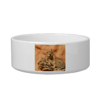 Cute Chipmunk Bowl