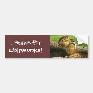 Cute Chipmunk Bumper Sticker