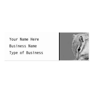 Cute Chipmunk. Business Card