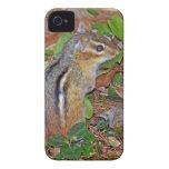 Cute Chipmunk Case-Mate iPhone 4 Case